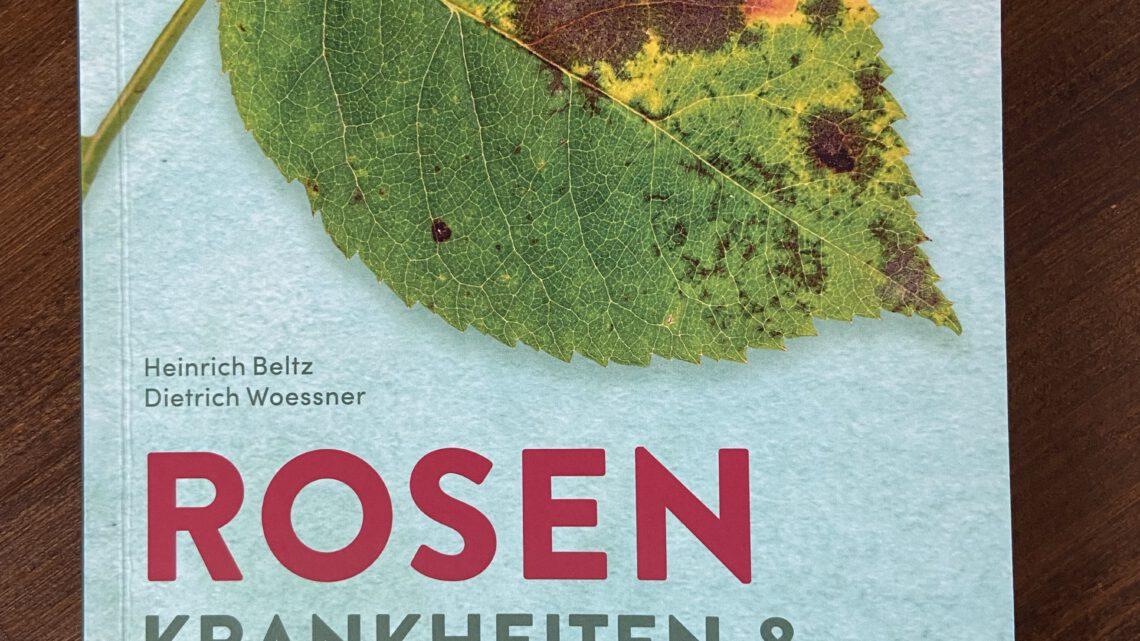 Rezension – Rosen